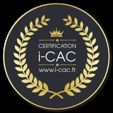 """I-CAC     Indice de  cotation des artistes certifiés  """" E VOGEL ARTISTE CERTIFIE"""""""